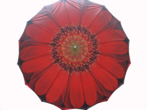 Big Flower Design Double Layers Manual Open Gift Umbrella (SU025-5) pictures & photos