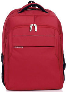 Backpacking Laptop Bag Backpack (SB6052) pictures & photos