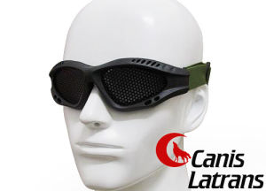Airsoft Paintball Wire Mesh Protective Goggles Cl8-0019 pictures & photos