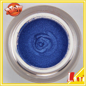 Crystal Interference Factory Mica Powder for Painting pictures & photos