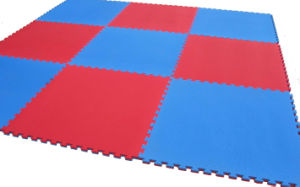 EVA Tatami Mat for Gym pictures & photos