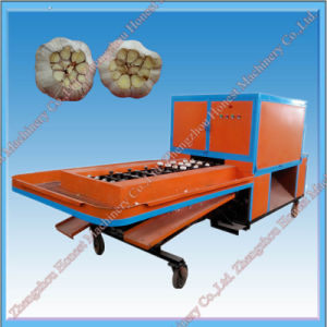 High Quality Garlic Root Cutting Machine China Supplier pictures & photos