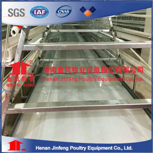Chicken Cages / Quail Cages / Poultry Cages (Factory) pictures & photos