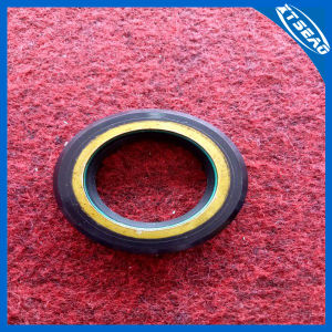 Power Steering Oil Seals/Hydraulic Rubber Oil Seals pictures & photos