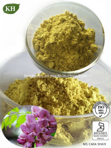 Quercetin 98% UV / Quercetin Soluble in Water pictures & photos