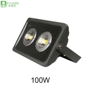 100W PC Cover Die Cast Aluminum LED Floodlight pictures & photos