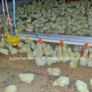 New Type Stainless Steel Chicken Water Line for Isolated Farm pictures & photos