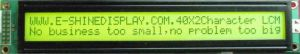 STN LCD Character COB EC4002A0-YF-6Y pictures & photos