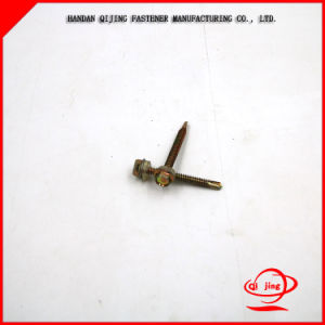 China Manufacturer High Quality Stainless Steel Machine Screws pictures & photos