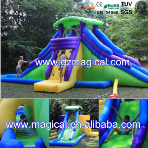 Water Slide Inflatable Backyard Water Park Slide (MCA-114) pictures & photos