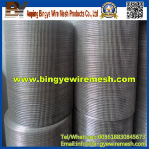 China Supplier Stainless Steel Welded Mesh for Sale pictures & photos