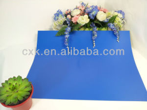 High Resolution Sensitivity CTP Printing Plate pictures & photos
