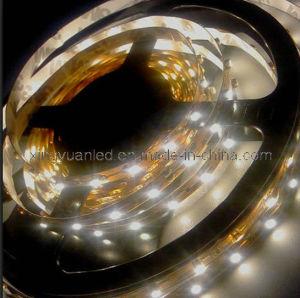LED Strip Light/ LED Ribbon/ Waterproof/ Flexible (CJ-XY -3528-60-1M)