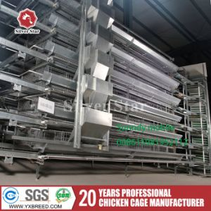 Poultry Farming Battery Wire Mesh Cage with Cooling Fan H6l288 pictures & photos