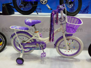 Children Bike, Balance Bike, BMX Bike, Bicycle, Mountain Bike, Kid Bike, Child Bike pictures & photos