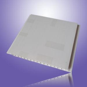 PVC Ceiling (MZQ-001)