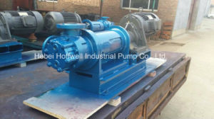 NYP52A Canned Internal Gear Pump for Molasses pictures & photos