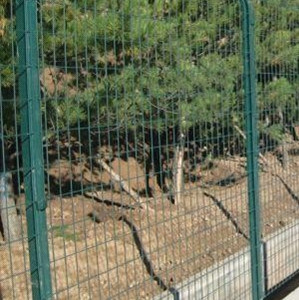 Welded Wire Fence / Galbanized Fence for School pictures & photos