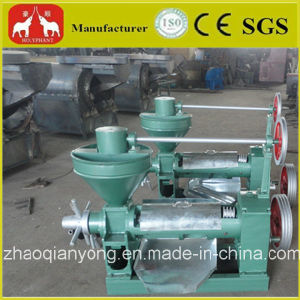 100-150kg/H Small Oil Press pictures & photos