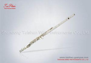 Flutes (TSFL-K312C)