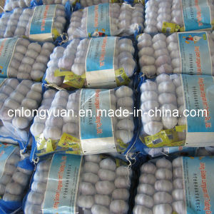 Top Quality Pure White Garlic 250g Small Bag pictures & photos