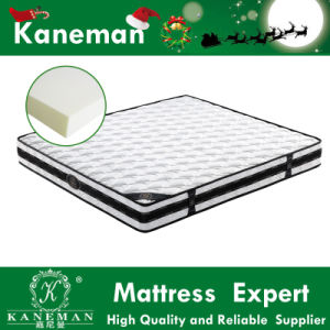 Traditional Recyclable Foam Mattress High Quality with Competitive Factory Price pictures & photos