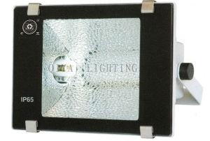 Flood Light (QYTG300-A Double) pictures & photos