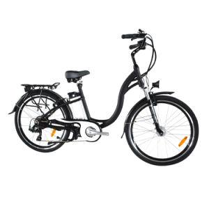 Pas 500W Lithium Electric Bike (TDF01Z)