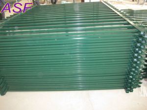 Spear Top Steel Tubular Fencing pictures & photos