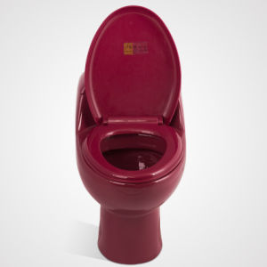 Porcelain Sitting with Seat Cover One Piece Wc Toilet, Wine Red pictures & photos