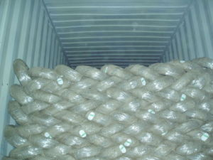 Top Quality Galvanized Wire/Soft Wire/Binding Wire