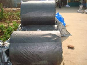 Coated/Uncoated Woven Fabric on Roll (XH-028) pictures & photos