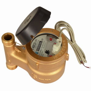 Multi Jet Iron Water Meter (MJ-LFC-F5-3) pictures & photos