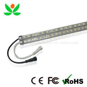 LED Bar (GL-RB-100N-06)