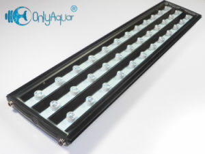 Wholesale AC85-265 72W Aquarium LED Light with Ce RoHS pictures & photos