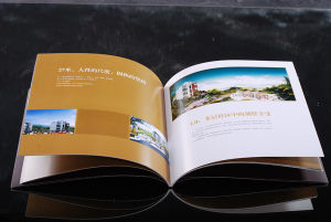 Business advertising album (HD-SG-T017)