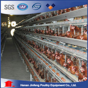 Automatic Poultry Farm Chicken Cage Hot Sale in Nigeria/Kenya pictures & photos