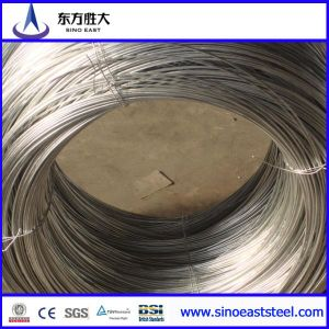 Gi or Black Annealed Wire (Q195) pictures & photos