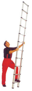 3.2SM Telescpic Ladder (SG-T320)