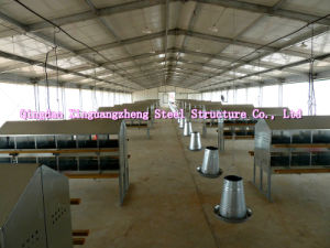 Poultry House (PCH-8) - China Poultry House, Chicken House