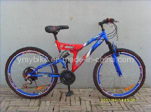 MTB Bike (AD-M091)