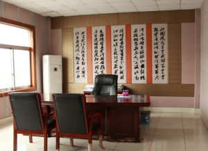 Polyester Decorative Carved Acoustic Office Partition and Wall Panel (1) pictures & photos