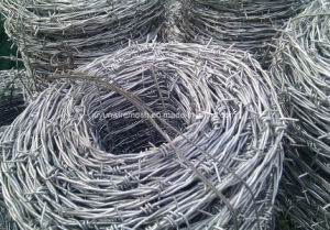 Hot-Dipped Galvanized Razor Barbed Wire for Fence pictures & photos