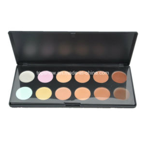 Private Label No Logo 12 Colors Cosmetic Concealer Makeup Palette for Beauty Women Fg12