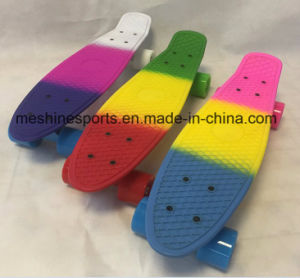 Rainbow Penny Fish Skateboard with Ce Approved pictures & photos