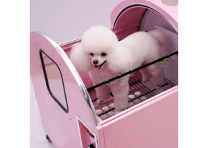 Full-Automatic Pet Dryer for Small Dogs and Cats pictures & photos