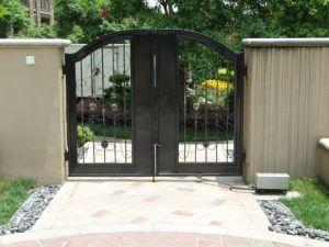 Anny 1802f01 Gate Opener/ Gate Operator / Door Opener / Door Operator pictures & photos