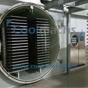 Lemon Slice Vacuum Freeze Dryer/Lemon Vacuum Lyophilization Equipment pictures & photos