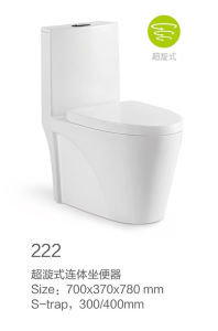 222 Siphonic One-Piece Toilet with Color pictures & photos