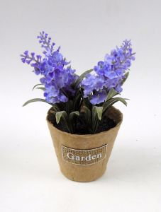 Lavender in Paper Pot with Label